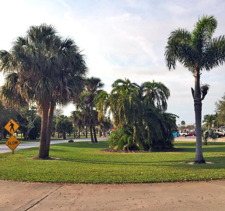Fournier Florida Camp 2017
